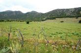 Το οροπέδιο του Βάτου στα Ακαρνανικά Όρη