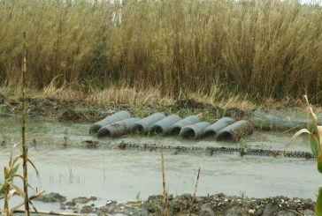 Οικολογική Δυτική Ελλάδα  για αντιπλημμυρικά: η καλύτερη δικαιολογία για επεμβάσεις στα ποτάμια!