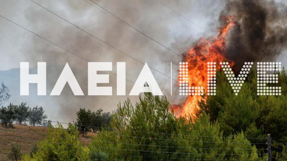 Φωτιά στην Ωλένη Ηλείας: Ενισχύονται οι πυροσβεστικές δυνάμεις
