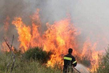 Πυρκαγιά στην Τρύφο Ξηρομέρου