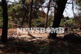 Βαρυμπόμπη: Έσκαβαν επί τρεις μήνες την περιοχή οι άτυχοι άνδρες- Ποια η αιτία θανάτου τους