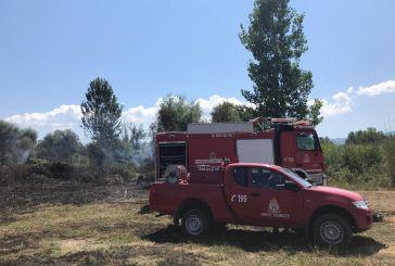 Πυρκαγιά στο Δρυμό Βόνιτσας κινητοποίησε την Πυροσβεστική