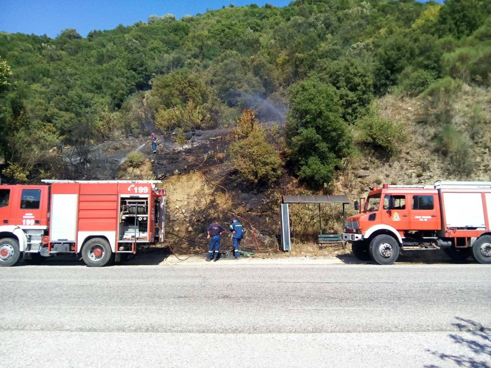 Mάχη με τις φλόγες σε δασική έκταση στα Φραγκουλέικα- Ενδείξεις για εμπρησμό