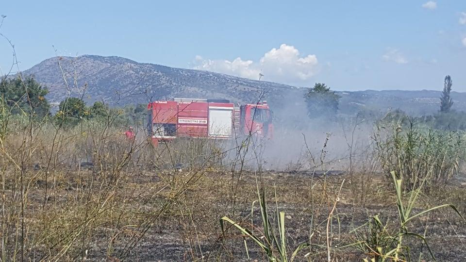 Κινητοποίηση της Πυροσβεστικής για πυρκαγιά στον Άγιο Γεώργιο Καλυβίων