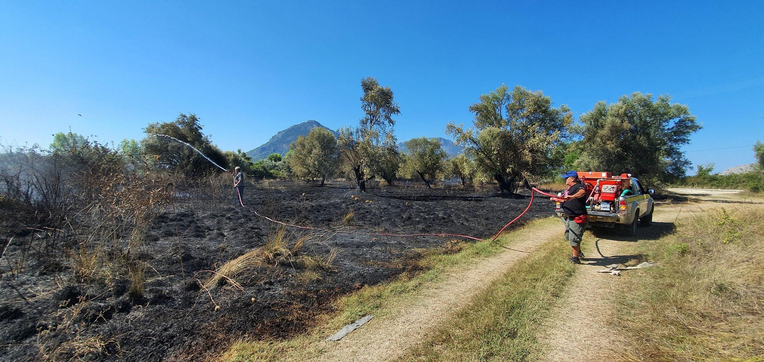 """Φωτιά στη θέση """"Αργυρέικα"""" της Κοινότητας Βάρνακα"""