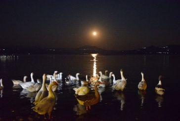 Το ολόγιομο φεγγάρι στην Τριχωνίδα!