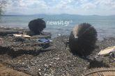 Τραγωδία στην Εύβοια: 8 οι νεκροί – Ταυτοποιήθηκε ο 70χρονος