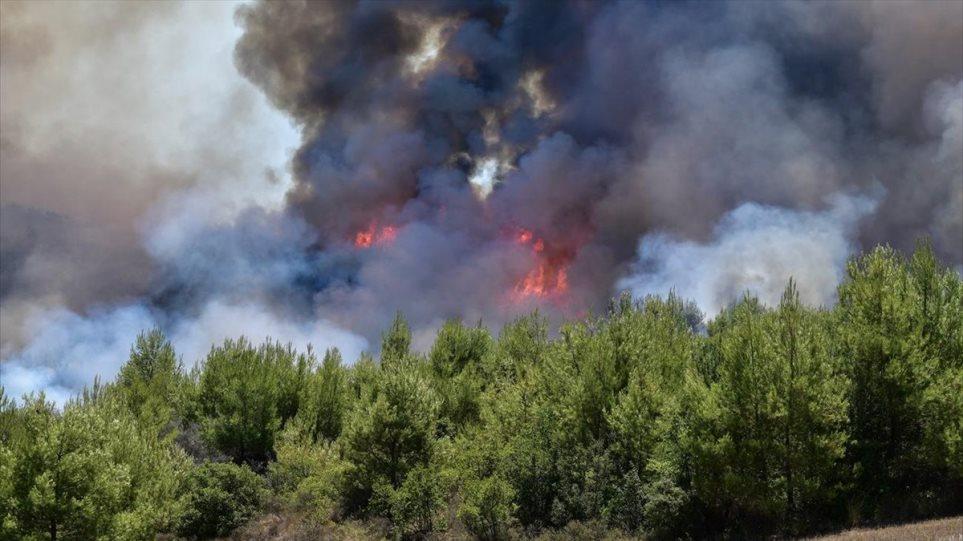 Μεγάλη κινητοποίηση της Πυροσβεστικής για φωτιά στην Αστροβίτσα Αιτωλικού