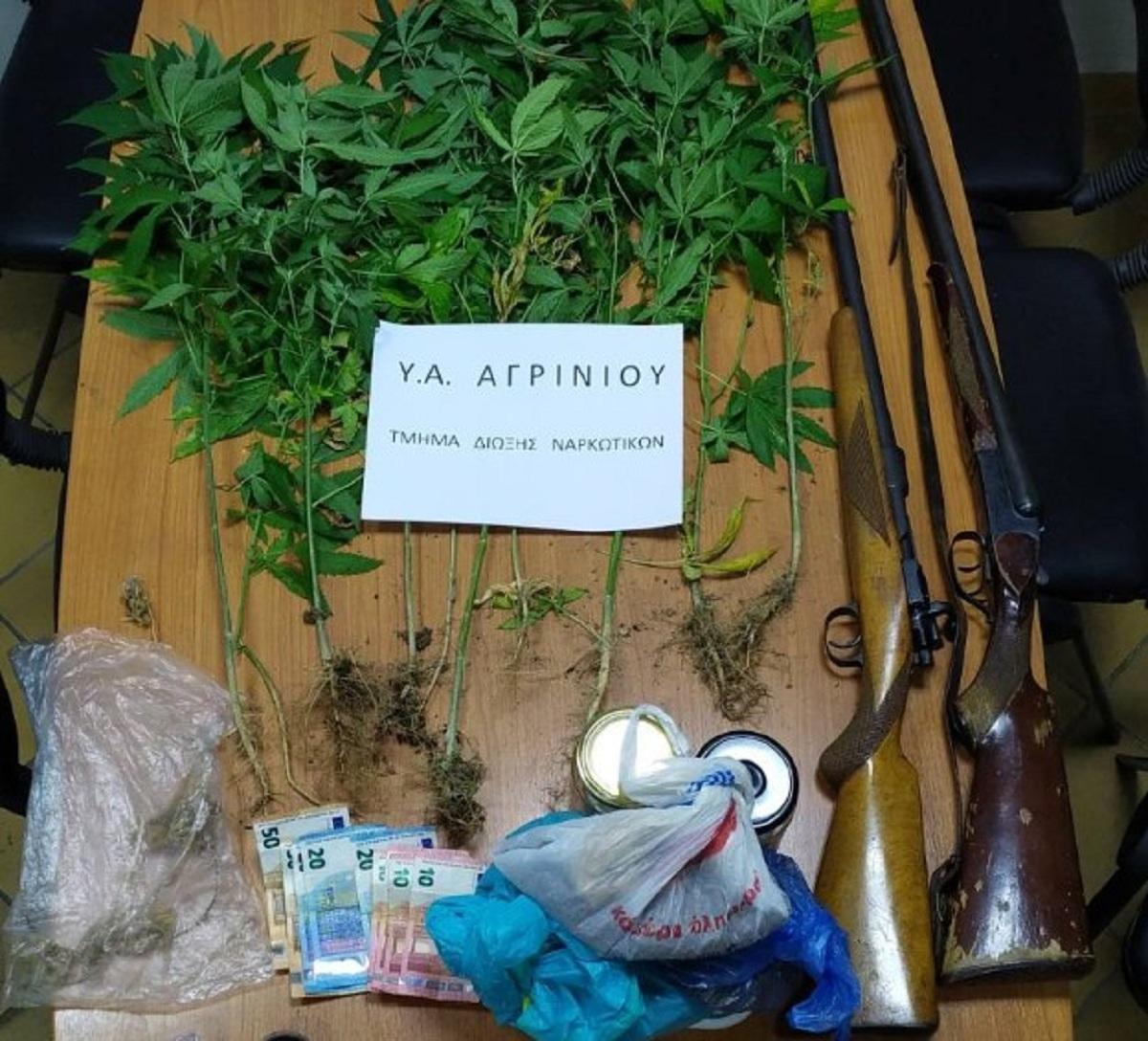 Δενδρύλλια χασίς και καραμπίνες σε σπίτι σε χωριό κοντά στο Αγρίνιο- Mία σύλληψη