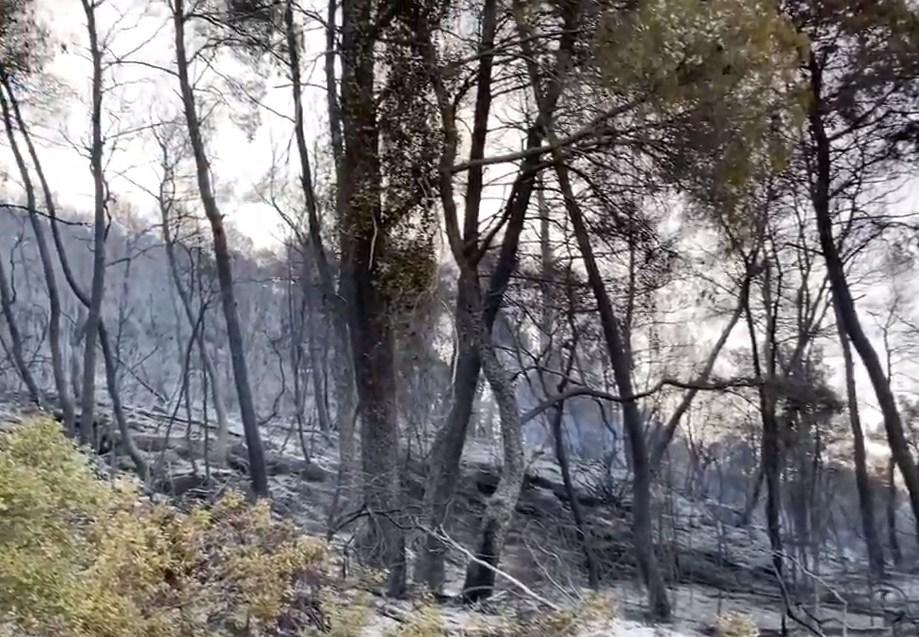 Φωτιά στο Τρίκορφο Ναυπακτίας: Η εικόνα με το πρώτο φως της ημέρας- Σε επαγρύπνηση η Πυροσβεστική