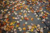 Φθινοπωρινή Ισημερία: Ξεκινά κι επίσημα σήμερα το απόγευμα το φθινόπωρο