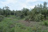Κώστας Λύρος: Άμεσα να εκτιμηθούν και να αποζημιωθούν οι ζημιές στον κάμπο Οινιαδών