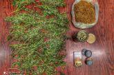 Καλλιεργούσε χασίς στις Οινιάδες, είχε και λαθραίο καπνό