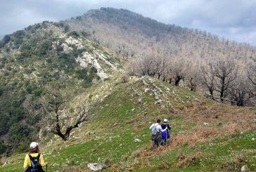 Το πρόγραμμα του Ορειβατικού Συλλόγου Μεσολογγίου αναστέλλεται λόγω καραντίνας