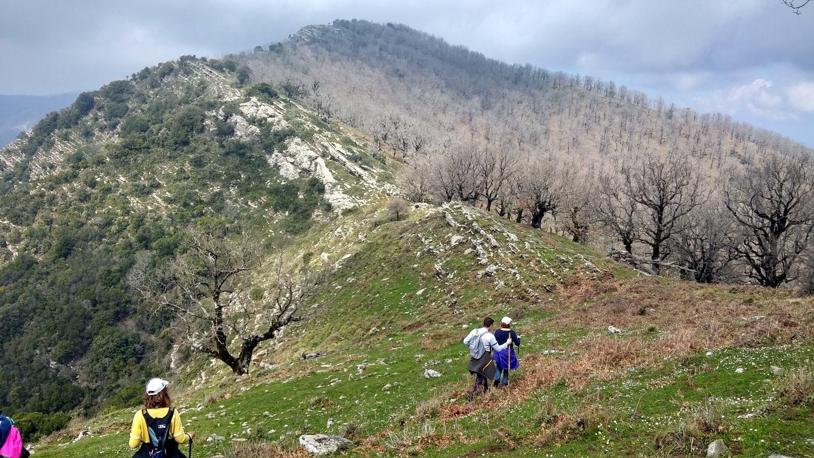 Αναβάλλεται για την επόμενη Κυριακή η πορεία του Ορειβατικού Συλλόγου Μεσολογγίου