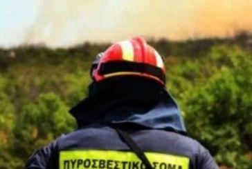 Δυτική Ελλάδα: Γιατί είχαμε αρκετές πυρκαγιές τον Νοέμβριο;