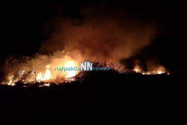 Ναύπακτος: Μεγάλη πυρκαγιά στην περιοχή του Πούντου