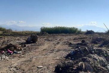 Ανυπότακτο Αγρίνιο: ερώτηση για τα μπάζα στην Τριχωνίδα