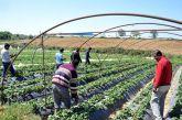 Λύση στη διαδικασία μετάκλησης εργατών γης από τρίτες χώρες