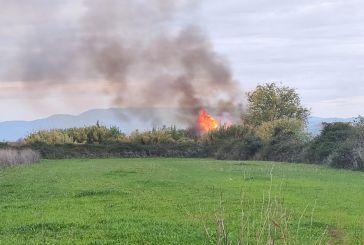 Δήμος Μεσολογγίου: Αυξημένη προσοχή κι ετοιμότητα για την πρόληψη πυρκαγιών
