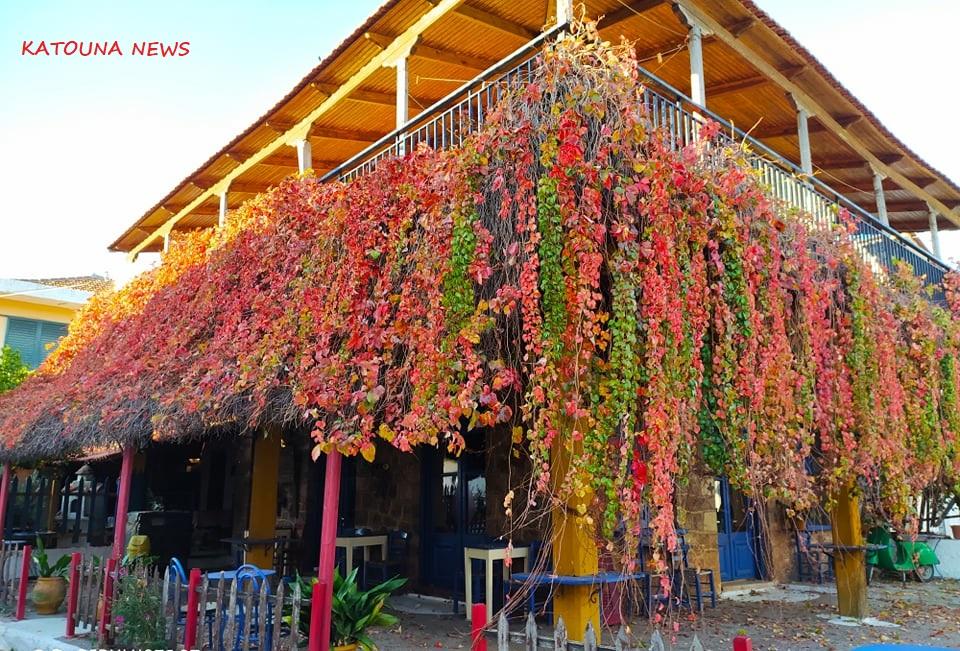 Φθινοπωρινές εικόνες εν μέσω καραντίνας στην Κωνωπίνα