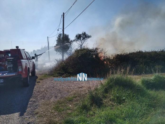 Μικρές πυρκαγιές στη Μακύνεια και στην Αφροξυλιά Ναυπακτίας