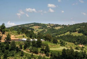 Ζητείται για αγορά κτήμα στην περιοχή του Αρακύνθου