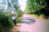 Mεσολόγγι: Το αλσύλλιο στη  λιμνοθάλασσα που νίκησε τον σκουπιδότοπο