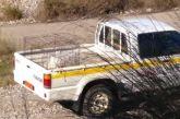 Που μεταφέρονται τα αδέσποτα από τον δήμο Αγρινίου