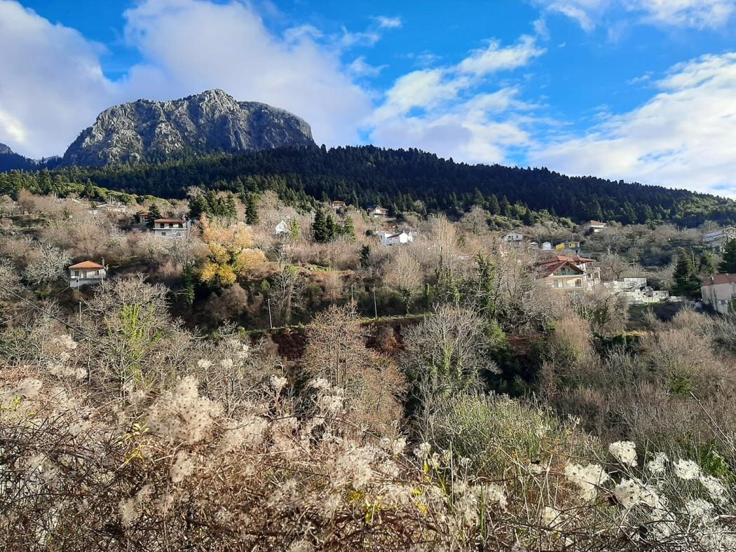 Γιατί στα ορεινά της Αιτωλοακαρνανίας υπάρχουν μόνο εξοχικά και όχι χωριά