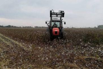 Αγρότες: Παράταση προθεσμίας για πληρωμή της ειδικής ασφαλιστικής εισφοράς