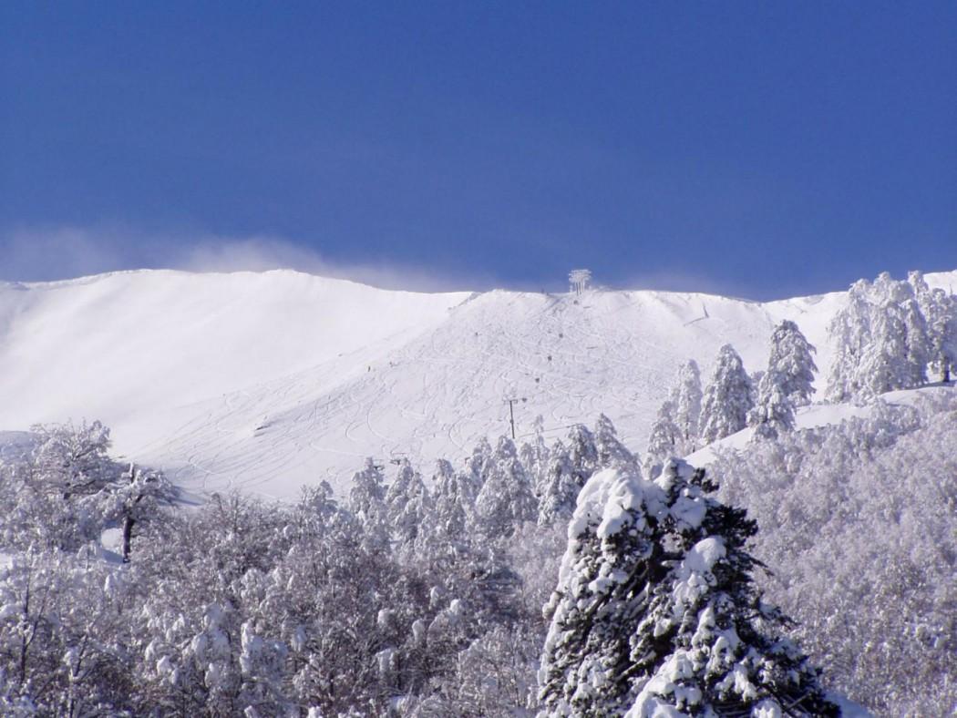 Σοβαρό ατύχημα στο Χιονοδρομικό Κέντρο της Βασιλίτσας Γρεβενών–Χιονοστιβάδα καταπλάκωσε σκιέρ