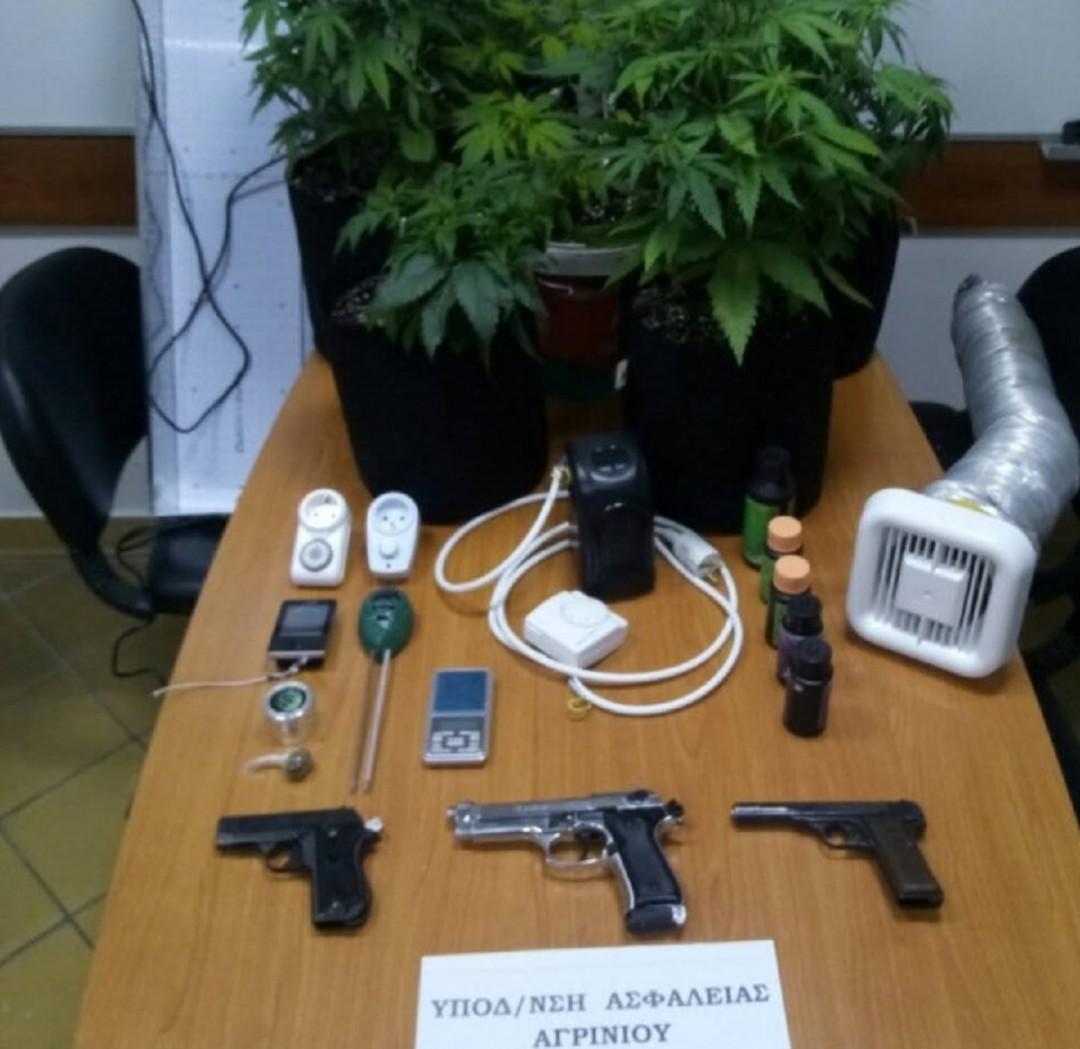 Για καλλιέργεια ναρκωτικώνκαι οπλοκατοχή κατηγορείται άνδρας που συνέληφθη στην περιοχή της Παλαίρου