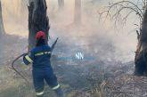 Φωτιά απείλησε σπίτια στο Κρυονέρι Ναυπακτίας (βίντεο)