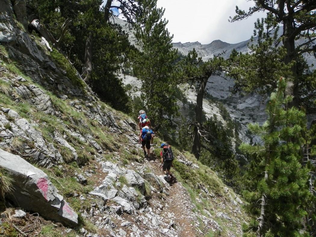 Η σύζυγος «κάρφωσε» τους ορειβάτες – Τσουχτερά πρόστιμα στο Πήλιο