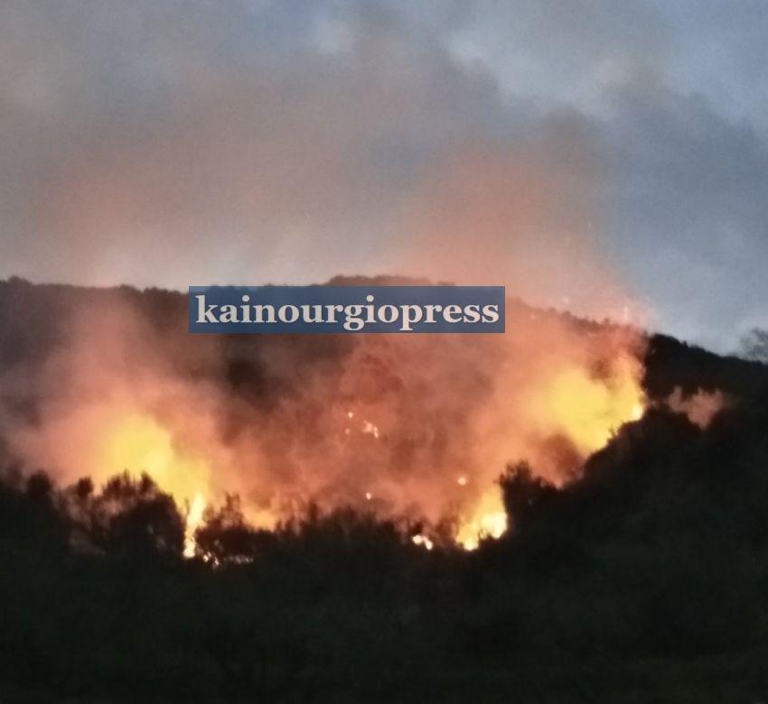 Φωτιά σε δασική έκταση στο Βλοχό