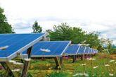 Μεσολόγγι: Σύσσωμη η αντιπολίτευση παίρνει «πάνω» της την υπόθεση «Ενεργειακή Κοινότητα»