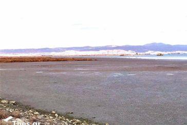 Τσελέντης: «Πως εξηγείται η πτώση της στάθμης της θάλασσας»