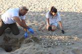 Κάλεσμα για εθελοντές από τον Φορέα Διαχείρισης Λιμνοθάλασσας Μεσολογγίου – Ακαρνανικών Ορέων