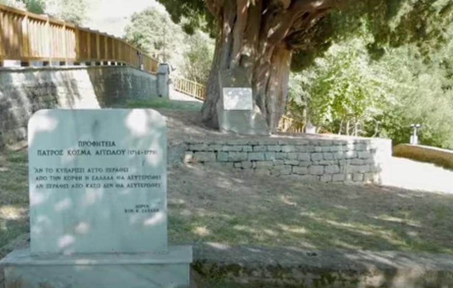 Εκτός εκδηλώσεων το επιβλητικό «Κυπαρίσσι του ΠατροΚοσμά» στην Πρασιά Αγράφων – Διαμαρτυρία κατοίκων