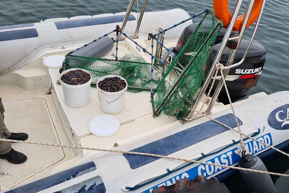 Τον «τσίμπησαν» να ψαρεύει ολοθούρια με «αργαλειό» στην περιοχή της Βόνιτσας