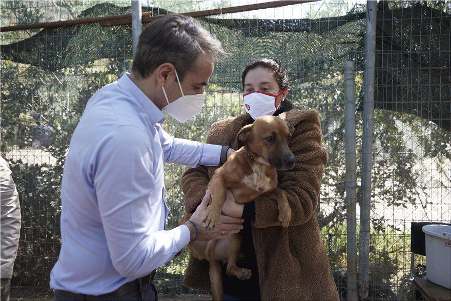 Υιοθέτησε σκυλάκι από το καταφύγιο που επισκέφθηκε ο Κυριάκος Μητσοτάκης