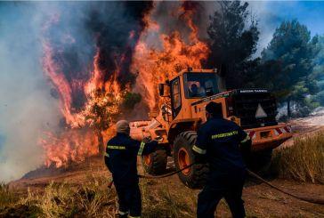 Μπαίνει κανείς φυλακή για τους εμπρησμούς «από αμέλεια;»- Όχι κανείς… ούτε καν για την πυρκαγιά στην Ηλεία το 2007