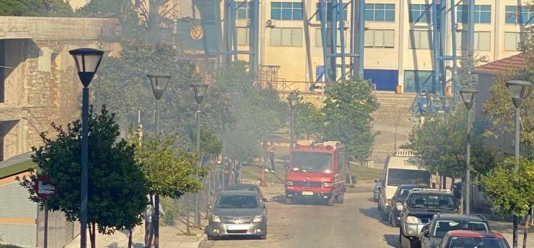 Αγρίνιο: φωτιά και σε φοίνικα κινητοποίησε την Πυροσβεστική