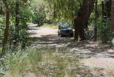 Αγρίνιο: Με το αυτοκίνητο εκδρομή στο πάρκο!