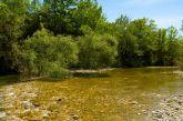 Οι ήχοι της φύσης στον ποταμό Ζέρβα (βίντεο)