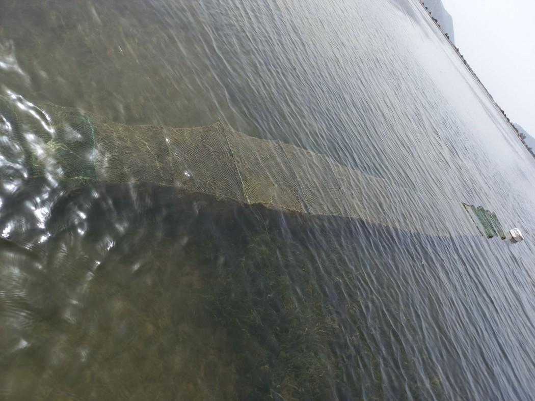 Εντόπισαν παράνομα αλιευτικά εργαλεία στο Διόνι (φωτο)