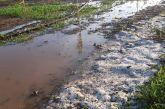 Ανυπολόγιστες οι ζημιές στον κάμπο των Οινιάδων από την χαλαζόπτωση – αυτοψίες από τον ΕΛΓΑ