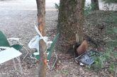 Καταστροφές μέχρι και από…μπάρμπεκιου στο πάρκο του Αγρινίου