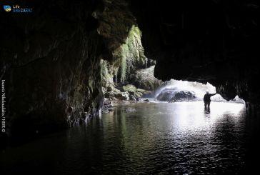 Εκπαιδευτική βαλίτσα για τις νυχτερίδες και τα σπήλαια της Ελλάδας